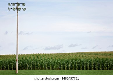 Field of Dreams baseball field with cornfield and outdoor light pole