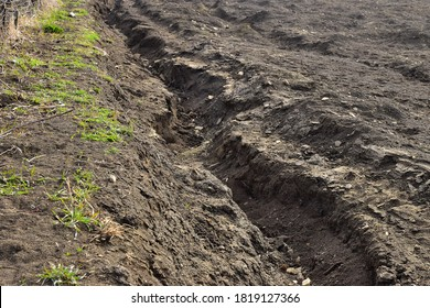 Field erosion wasting agricultural soil by water and wind erosion, field degradation in agriculture