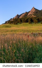 A field with the flatirons of Boulder, CO in the background.