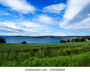 Field of fresh green grass at waterfront under beautiful cloudscape and blue sky