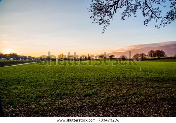 Field in front of Sunset in Solothurn Switzerland