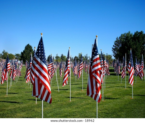 Field Full of American Flags