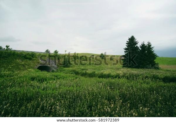 Field in Germany