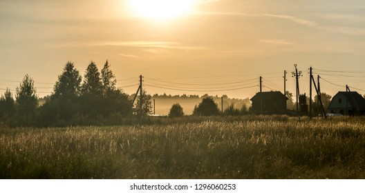 Field with grass and silhouettes of trees against the sunset sky