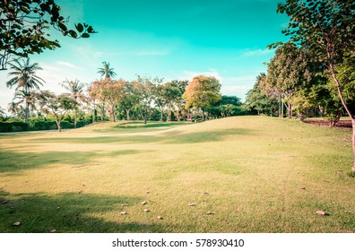 field of grass and sky background with retro vintage filter