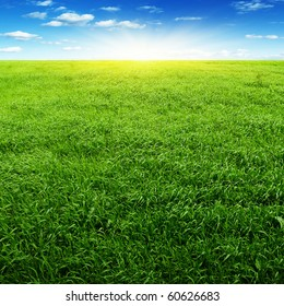 Field of grass,blue sky and sun.