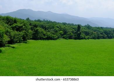 Field of grasses and mountains, Kiyosato highland, Yamanashi, Japan
