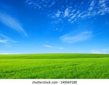 field of green grass with white clouds
