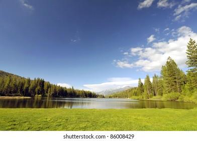 Field at Hume Lake