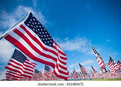 A field of hundreds of American flags.  Commemorating veteran's day, memorial day or 9/11.