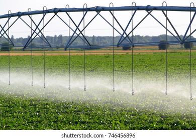 Field irrigation using the center agricultural pivot sprinkler system