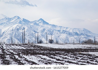 A field in the kyrgyz countryside covered with snow and mountains on the background