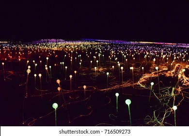 Field of Light. Great composition of colorful lights