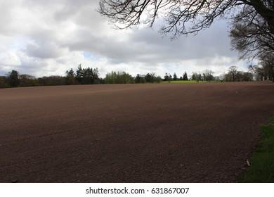 field near village of bucklyrie, scotland