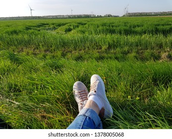 field on the background of the legs.