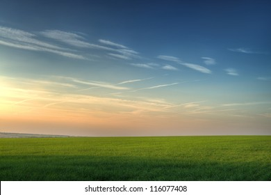 Field and picturesque sky. Highly detailed color