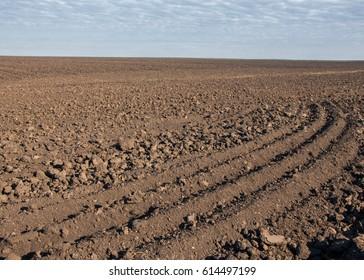 Field plowed, sown cereals. Plowed field in spring day. Black soil plowed field. Plowed field in the blue sky
