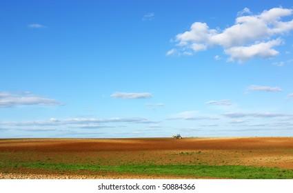 Field at Portugal, Alentejo region.