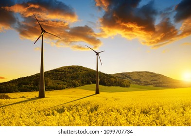 Field of rapeseed and wind turbines in spring landscape.