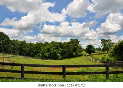 A field in a rural area of Virginia.