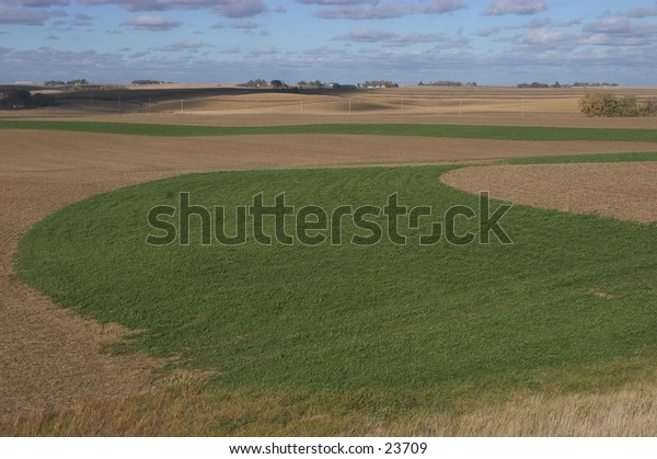 Field in rural Nebraska