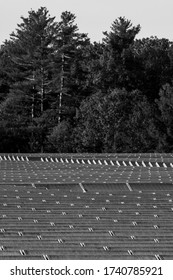 A field with solar panel installations in the suburbs of Massachusetts. Black and white.