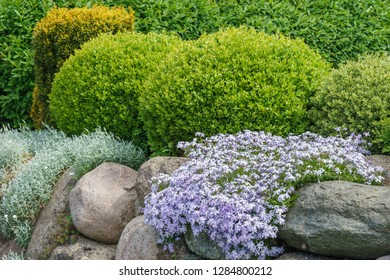 Field stones and plants in the garden