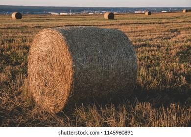 Field straw barn