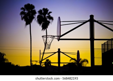 Field of street Basketball with palms and sunset sky in Los Angeles, California.