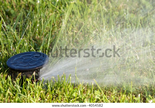 a field in summer is a sprinkler watering