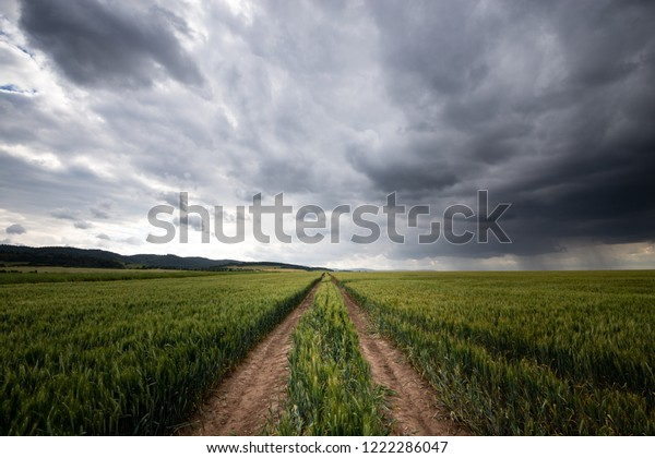 Field trails with storm