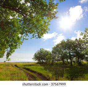 Field, trees, road, clouds & sun.