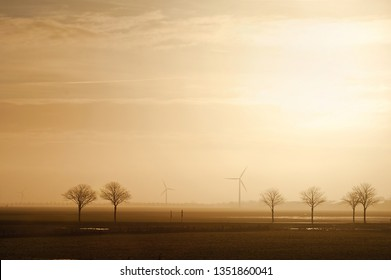 Field with trees and windmills on the horizon in the morning. Typical dutch landscape. North Holland, Hollands Kroon, Netherlands.