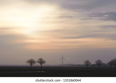 Field with trees and windmills on the horizon in the evening. Typical dutch landscape. North Holland, Hollands Kroon, Netherlands.