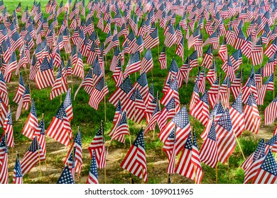Field of US flags