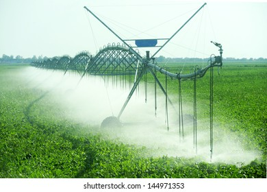 Field  watered by automatic sprinkler system
