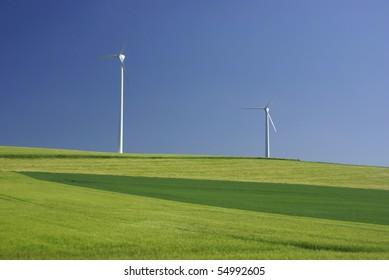 Field with windmills