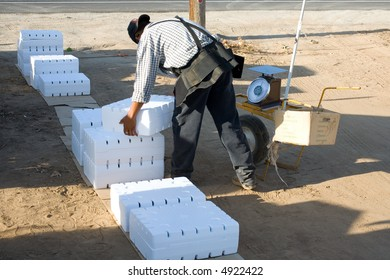 Field worker weighs and stacks packages of grapes, Central California