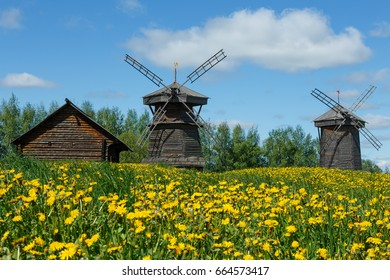 Field of yellow dandelions and wooden windmills in the village