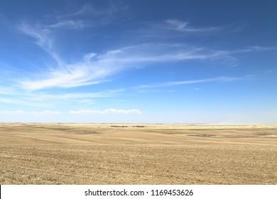 Fields along a highway in Saskatchewan, Canada