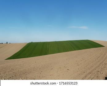 Felder in Österreich im Frühjahr