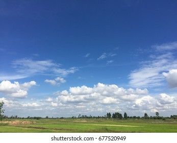Fields and blue sky in rainy season