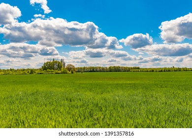 Fields at the city boundary between Berlin and Brandenburg, Germany. Over the landscape, white clouds can be seen in a bright blue sky.