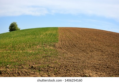 Fields divided in half as the contrast of fertile and barren land
