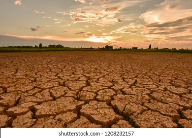 The fields are dry, the land is broken. And the evening sun.