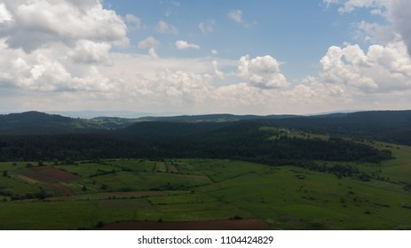 fields and forest in distance