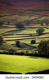Fields form a pattern in the Yorkshire dales on a summers evening