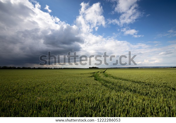 Fields, harvest and storm coming