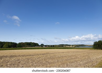 Fields and lake