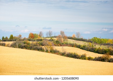 Fields, meadows, and trees in fall